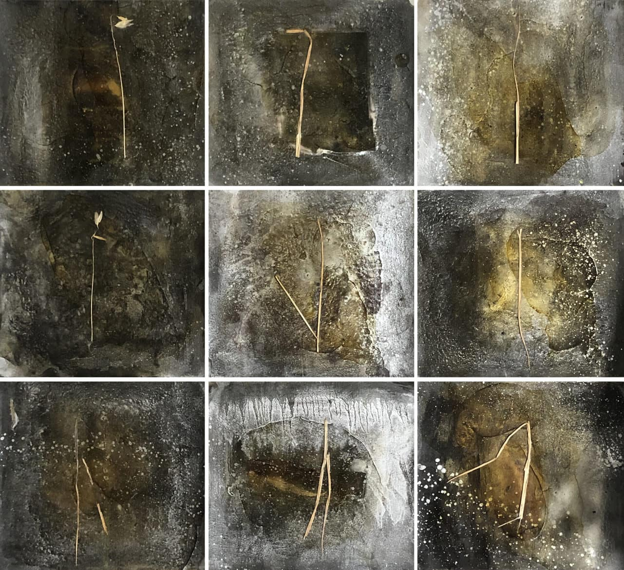Janet Laurence, 'Blindspot', 1991, charcoal, shellac, silver pigment and native grass on archival paper, 24 x 27 cm each, nine pieces, 72 x 81 cm overall