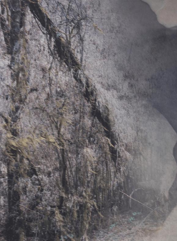 'Foresting #3 (Bhutan)', 2017, Duraclear on mirror, 27.5 x 20 cm, unique