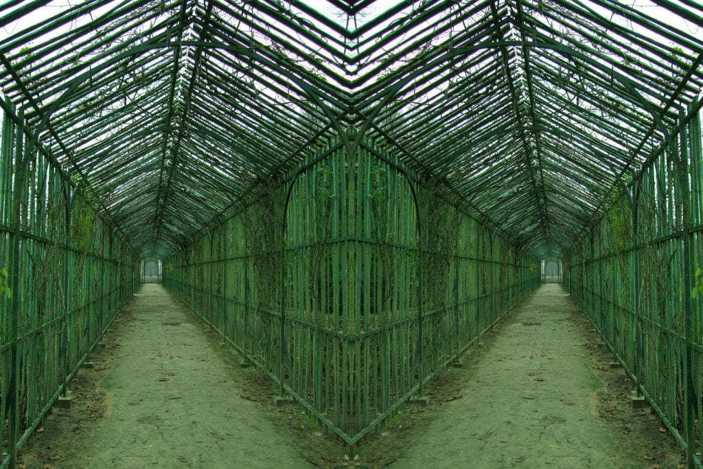 Janet Laurence, 'Marie Antoinette Arbour' from the Verdant series, 2003-2020, duraclear on acrylic, diptych, 100 x 120 cm overall, edition of 3 + 1AP